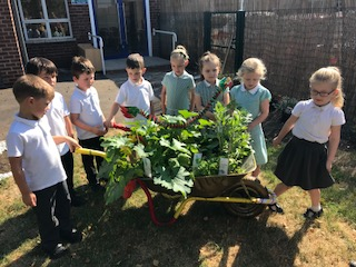 Broadheath Primary School's winning Wheelbarrow