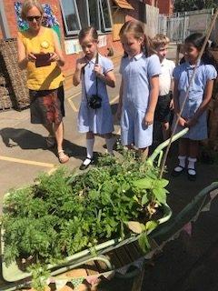 Navigation Primary School's Wheelbarrow
