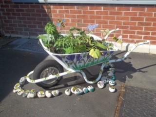 Oldfield Brow Primary School - Crocus Wheelbarrow